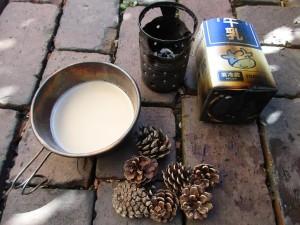 Iver1-fire-pine-cones-milk-20160116-10
