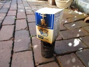ver1-fire-pine-cones-milk-20160116-6