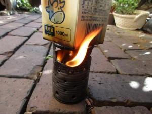ver1-fire-pine-cones-milk-20160116-7