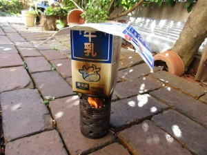 ver1-fire-pine-cones-milk-20160116-8
