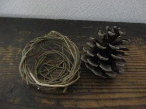 pine cones-pick-up-max-20160428-4