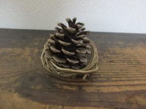 pine cones-pick-up-max-20160428-5